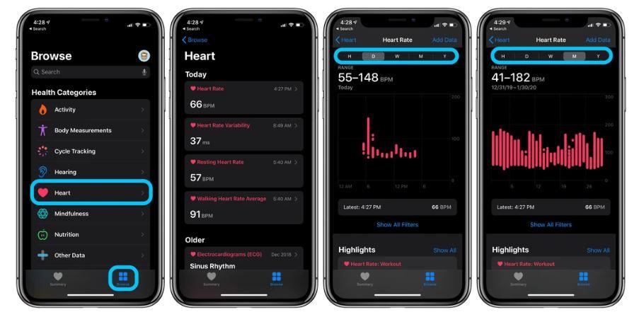 نحوه مشاهده تاریخچه ضربان قلب در اپل واچ